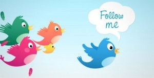 Twitter – follow the flock