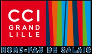 CCI Lille – Social Media