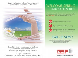 Leaflet GSF USA - Spring cleaning promotion