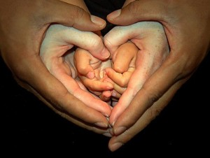 Multi-generational hands heart shaped